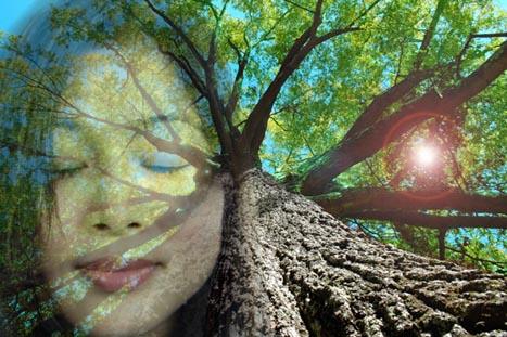 Transcending Tribal Mentality