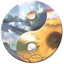 Yin Yang Photo: Transcending Duality